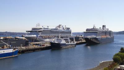 The broadening coronavirus outbreak forces the Carnival Corp. subsidiary to implement a 60-day pause